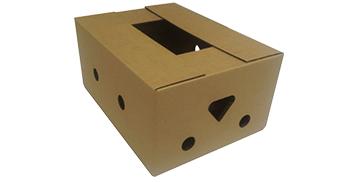 Caja tapa y fondo